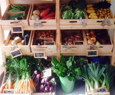 FD - Giddens & Thompson - Vegetables