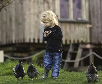 WTS - Alde Garden - child with chickens