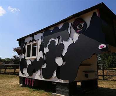 WTS - Easton Farm Park - Buttercup