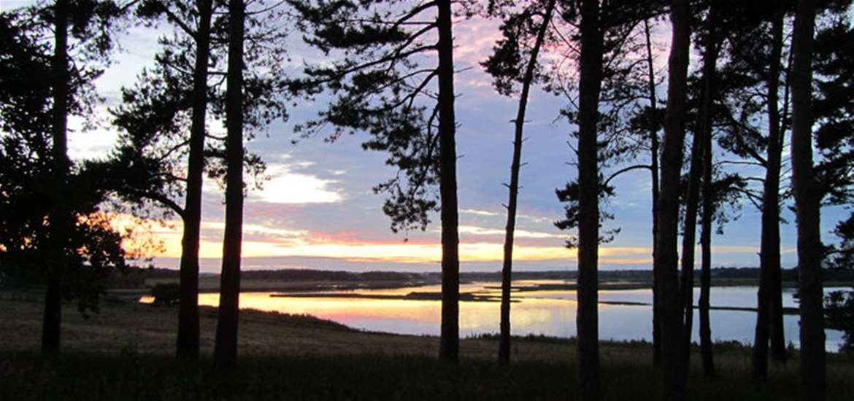 WTS - Iken Barns - Silhouette View
