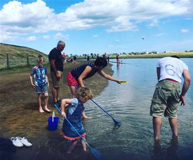 Rock Pools and Crabbing on The Suffolk Coast