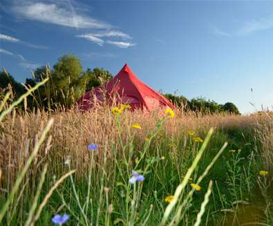 Guide to Camping & Glamping
