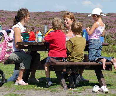 TTDA - National Trust Dunwich Heath - Picnic