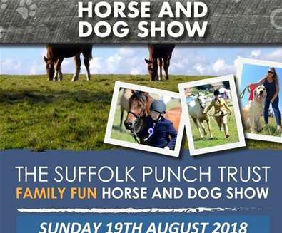 Horse and Dog Show..