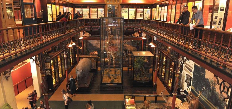 TTDA - Ipswich Museums - Museum