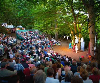 Theatre in the Forest at Home