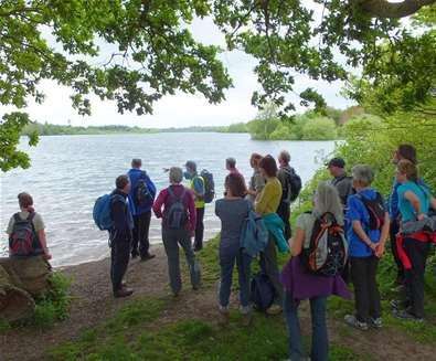 TTDA - Suffolk Walking Festival