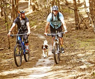 Tunstall Forest - Cyclists with Dog - (c) Ade Gormley