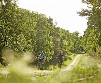 Suffolk Coast Cycle Ride